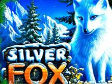 Автомат на деньги Silver Fox