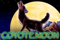 В онлайн клубе на деньги Луна Койота